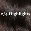 p-35897-wealthy-hair-2-_4_highlights_colors_1_1